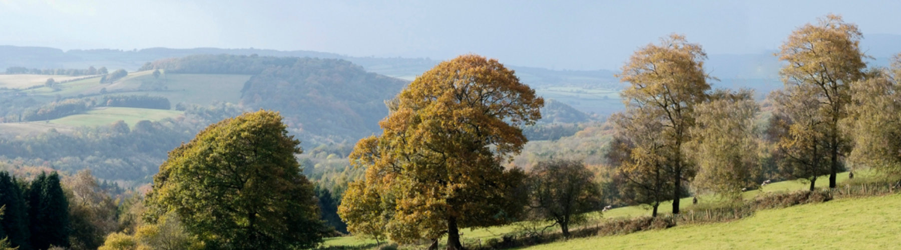 Other Activities in the Wye Valley - Spring Cottage Holidays