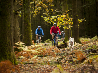 Cycling Holidays in the Wye Valley