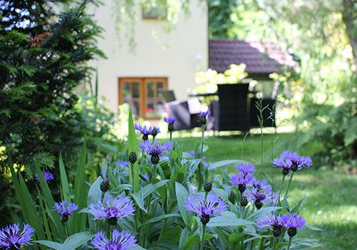 Wye Valley Holiday - Spring Cottage Gareden