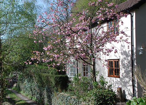 Holidays in the Wye Valley - Spring Cottage